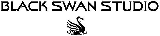 BLACK SWAN STUDIO - lampy na indywidualne zamówienie